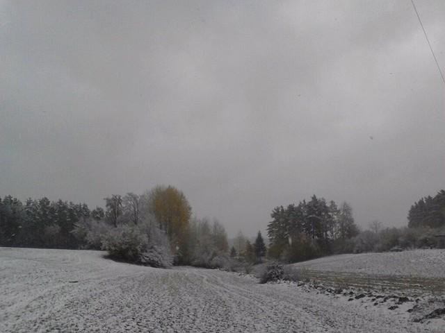 2012-10-27 Schneelandschaft